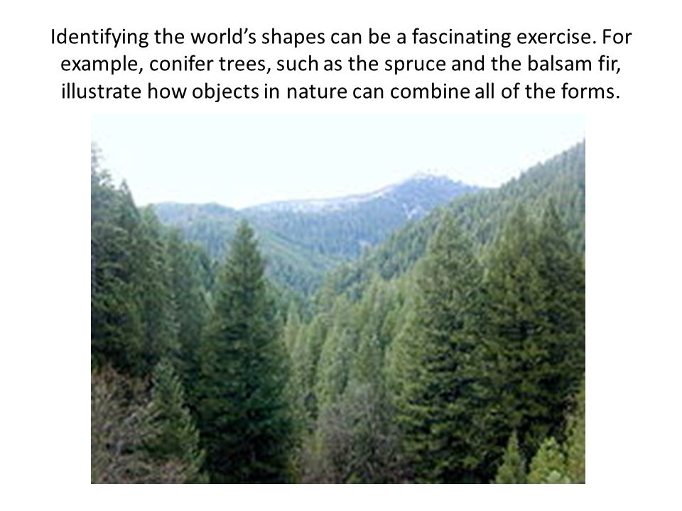 Identifying the worlds shapes can be a fascinating exercise.