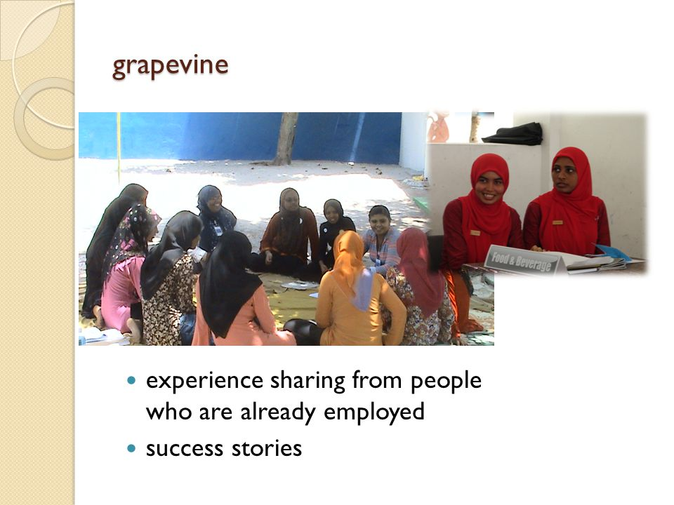 grapevine experience sharing from people who are already employed success stories