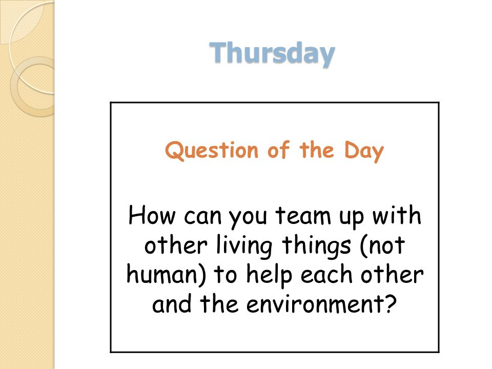 Thursday Question of the Day How can you team up with other living things (not human) to help each other and the environment