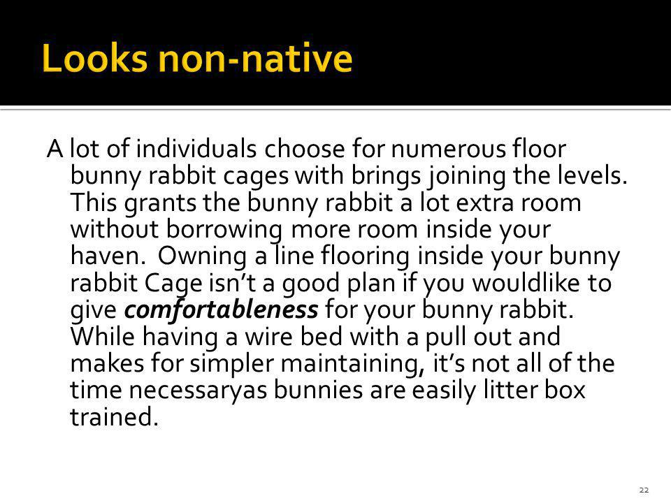 A lot of individuals choose for numerous floor bunny rabbit cages with brings joining the levels.