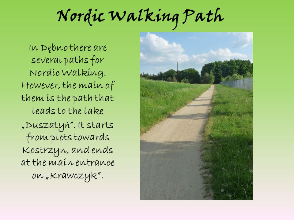 Nordic Walking Path In D ę bno there are several paths for Nordic Walking.