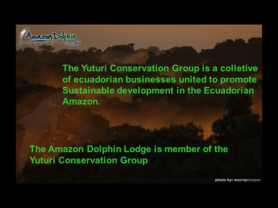 The Yuturi Conservation Group is a colletive of ecuadorian businesses united to promote Sustainable development in the Ecuadorian Amazon.