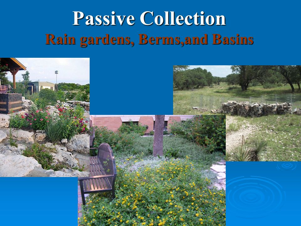 Passive Collection Rain gardens, Berms,and Basins