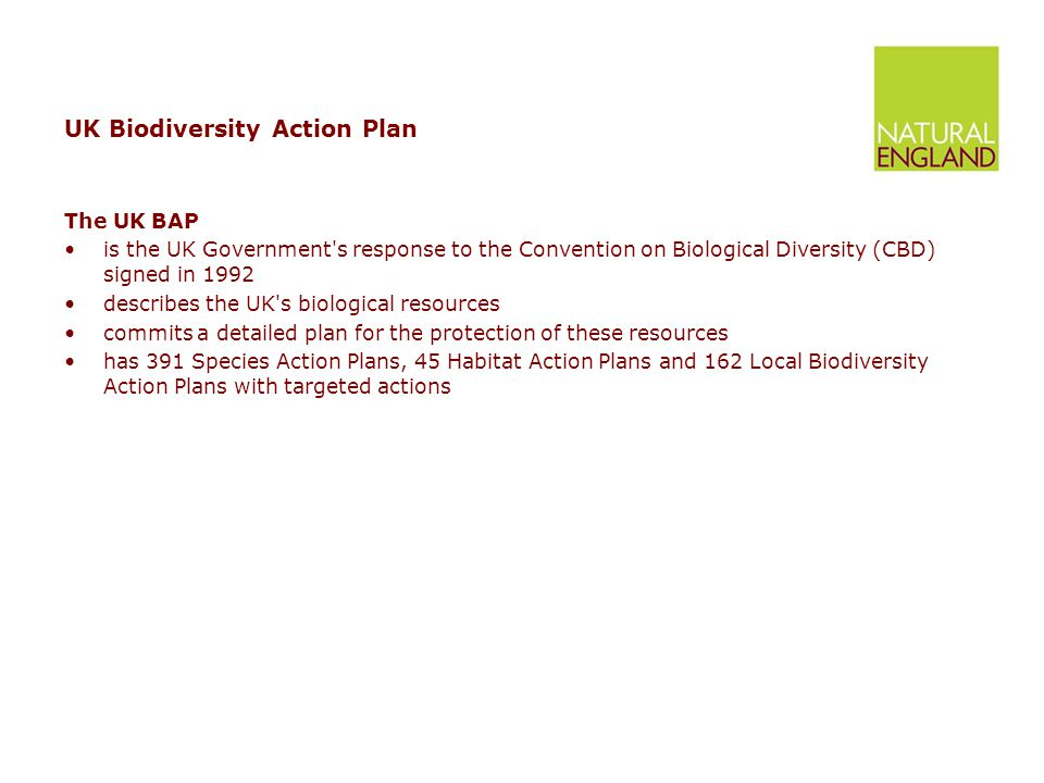 UK Biodiversity Action Plan The UK BAP is the UK Government s response to the Convention on Biological Diversity (CBD) signed in 1992 describes the UK s biological resources commits a detailed plan for the protection of these resources has 391 Species Action Plans, 45 Habitat Action Plans and 162 Local Biodiversity Action Plans with targeted actions
