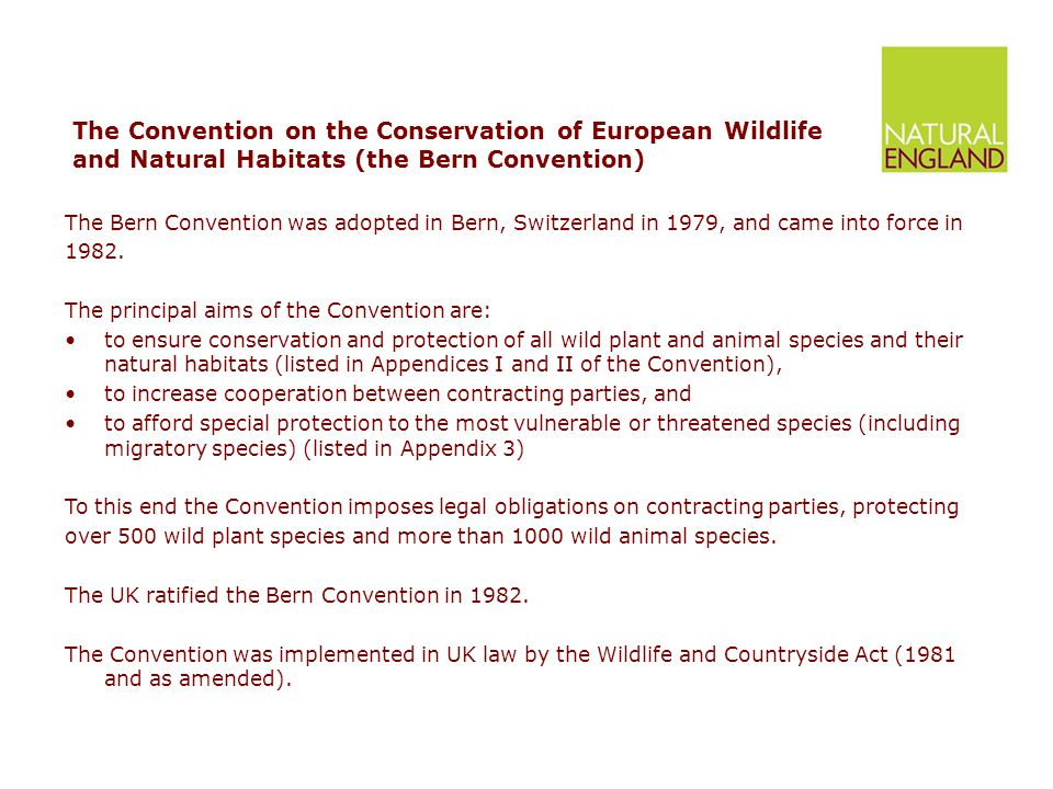 The Convention on the Conservation of European Wildlife and Natural Habitats (the Bern Convention) The Bern Convention was adopted in Bern, Switzerland in 1979, and came into force in 1982.