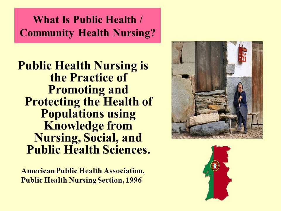 What Is Public Health / Community Health Nursing.