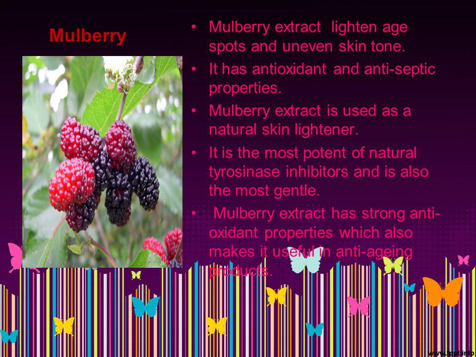 Mulberry Mulberry extract lighten age spots and uneven skin tone.