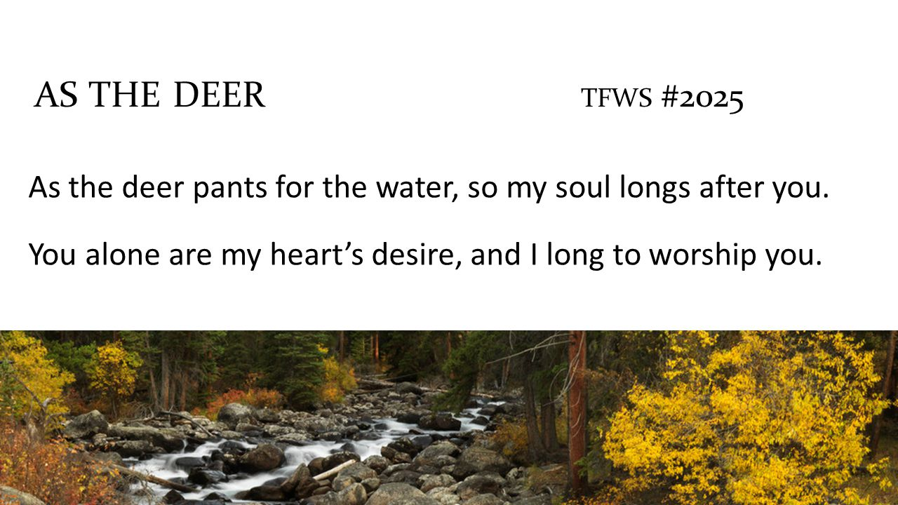 As the deer pants for the water, so my soul longs after you.