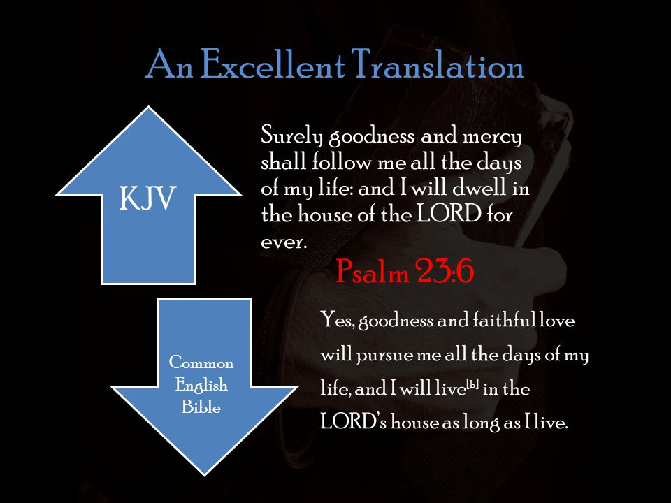An Excellent Translation Surely goodness and mercy shall follow me all the days of my life: and I will dwell in the house of the LORD for ever.