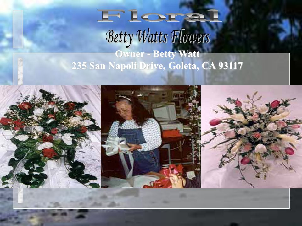 Owner - Betty Watt 235 San Napoli Drive, Goleta, CA 93117