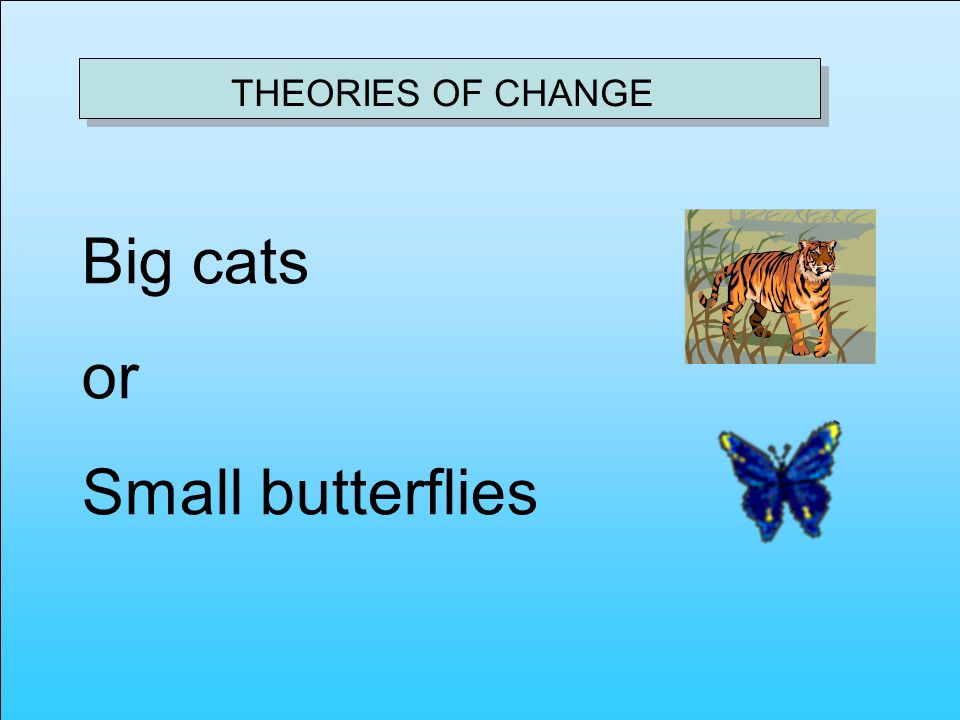 THEORIES OF CHANGE Big cats or Small butterflies
