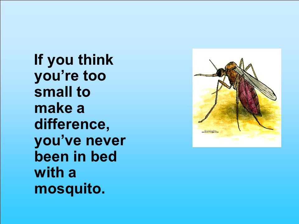 If you think youre too small to make a difference, youve never been in bed with a mosquito.