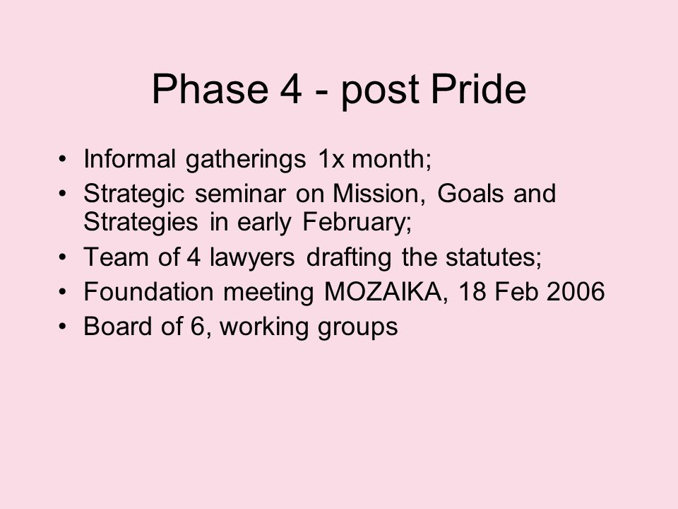 Phase 4 - post Pride Informal gatherings 1x month; Strategic seminar on Mission, Goals and Strategies in early February; Team of 4 lawyers drafting the statutes; Foundation meeting MOZAIKA, 18 Feb 2006 Board of 6, working groups