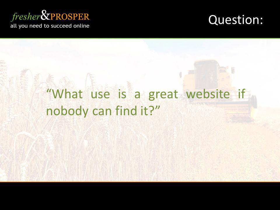 Question: What use is a great website if nobody can find it