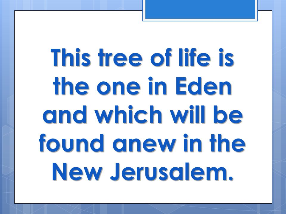 This tree of life is the one in Eden and which will be found anew in the New Jerusalem.