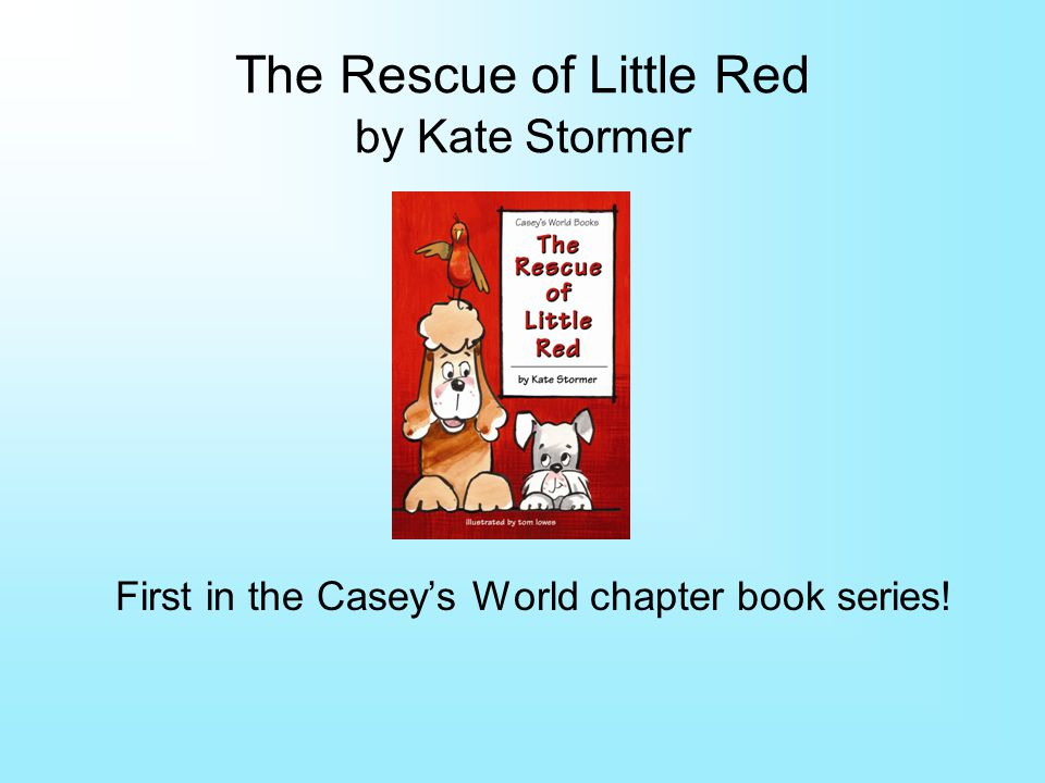 The Rescue of Little Red by Kate Stormer First in the Caseys World chapter book series!