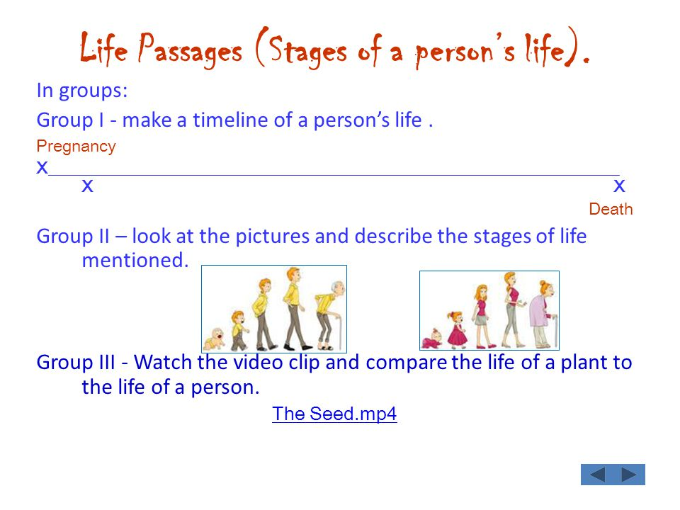 Life Passages (Stages of a persons life). In groups: Group I - make a timeline of a persons life.