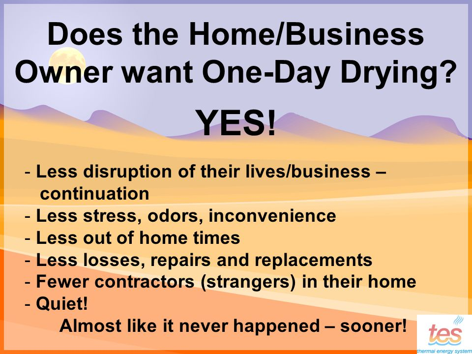 Does the Home/Business Owner want One-Day Drying. YES.