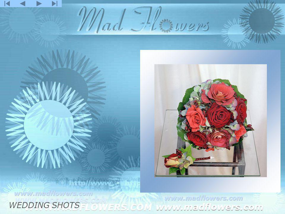 Click to edit Master title style Click to edit Master text styles –Second level Third level –Fourth level »Fifth level WWW.MADFLOWERS.COM www.madflowers.com WWW.MADFLOWERS.COM www.madflowers.com WWW.MADFLOWERS.COM www.madflowers.com WWW.MADFLOWERS.COM www.madflowers.com WWW.MADFLOWERS.COM www.madflowers.com WEDDING SHOTS