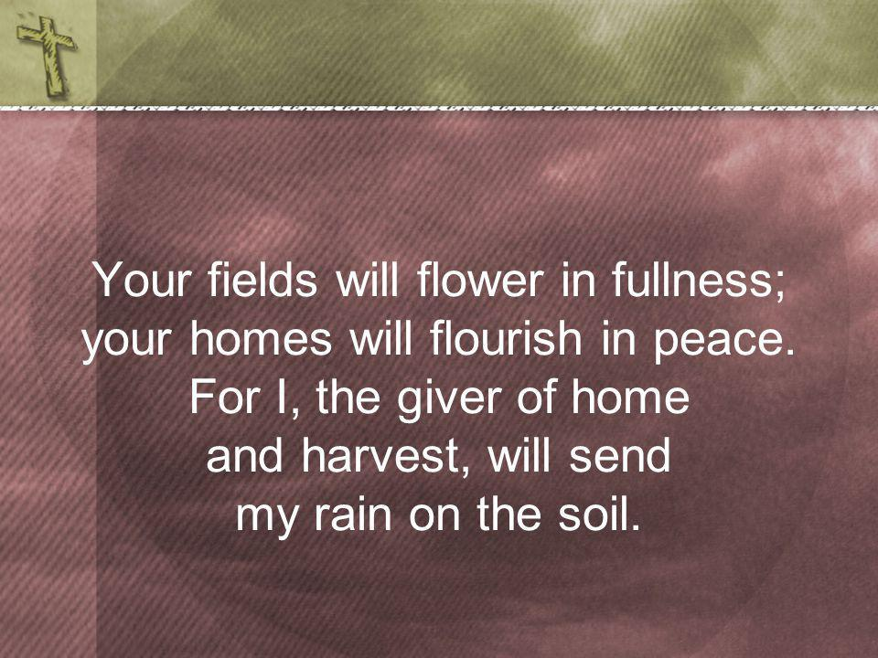 Your fields will flower in fullness; your homes will flourish in peace.