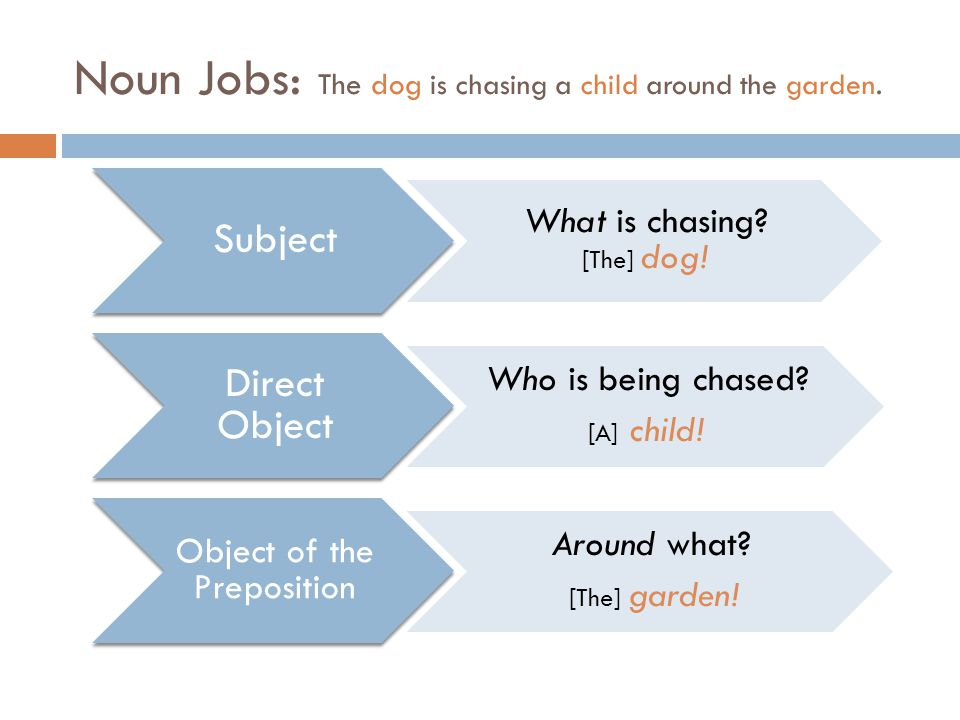 Noun Jobs: The dog is chasing a child around the garden.