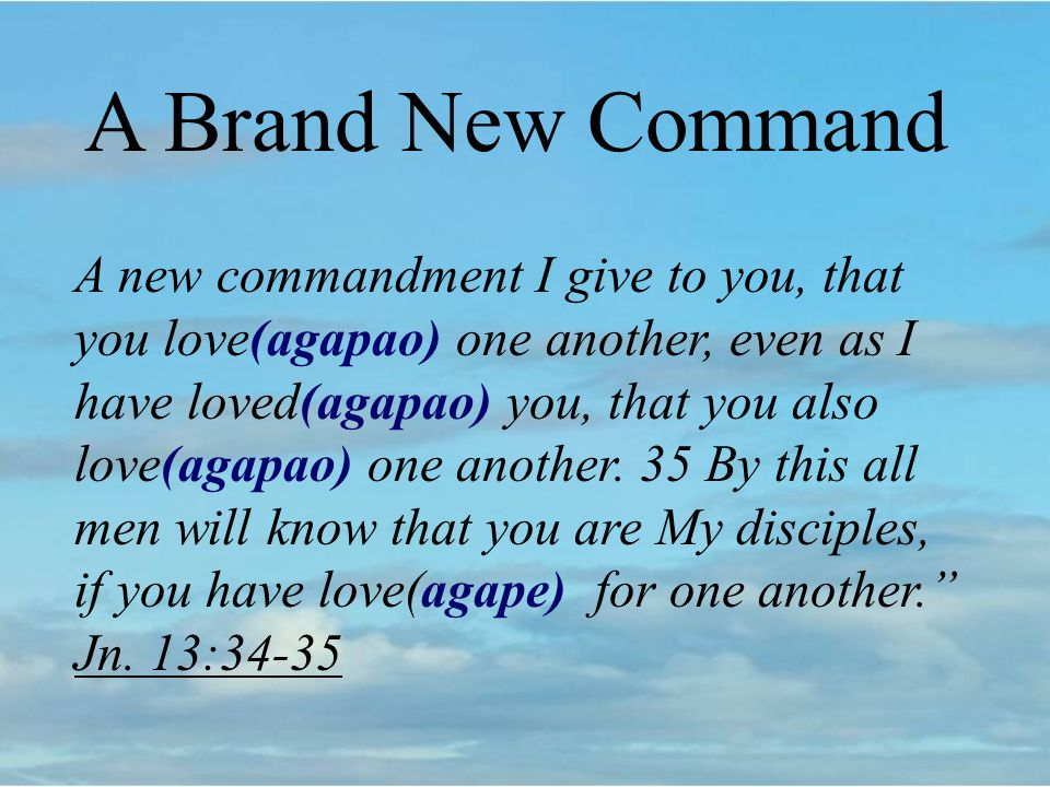 A Brand New Command A new commandment I give to you, that you love(agapao) one another, even as I have loved(agapao) you, that you also love(agapao) one another.