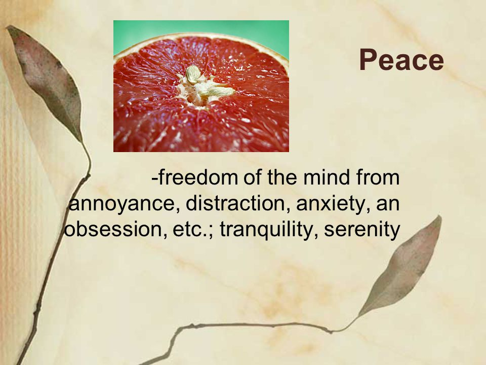 Peace -freedom of the mind from annoyance, distraction, anxiety, an obsession, etc.; tranquility, serenity
