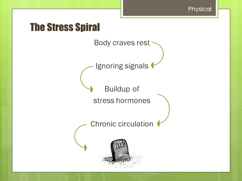 The Stress Spiral Body craves rest Ignoring signals Buildup of stress hormones Chronic circulation Physical