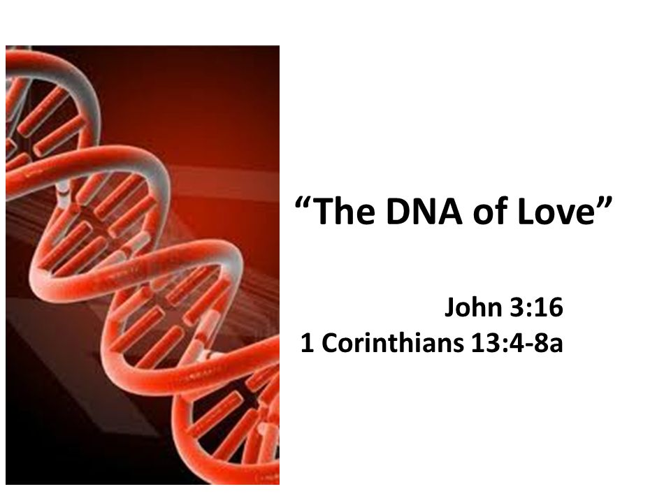 The DNA of Love John 3:16 1 Corinthians 13:4-8a
