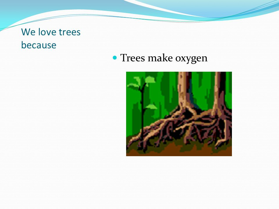 We love trees because Trees make oxygen