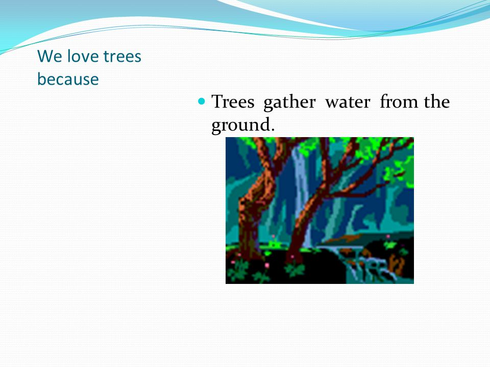 We love trees because Trees gather water from the ground.