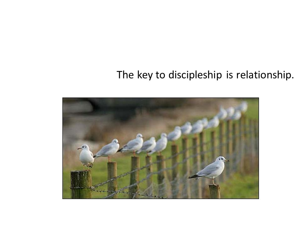 The key to discipleship is relationship.
