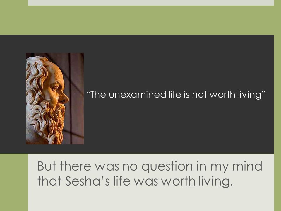 The unexamined life is not worth living But there was no question in my mind that Seshas life was worth living.