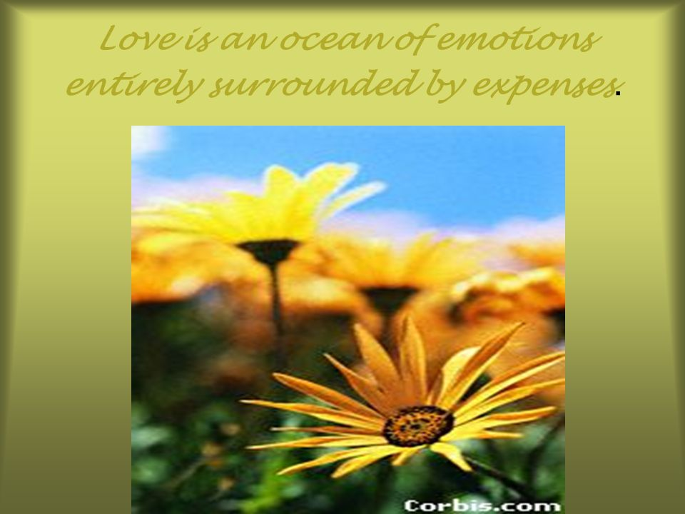 Love is an ocean of emotions entirely surrounded by expenses.