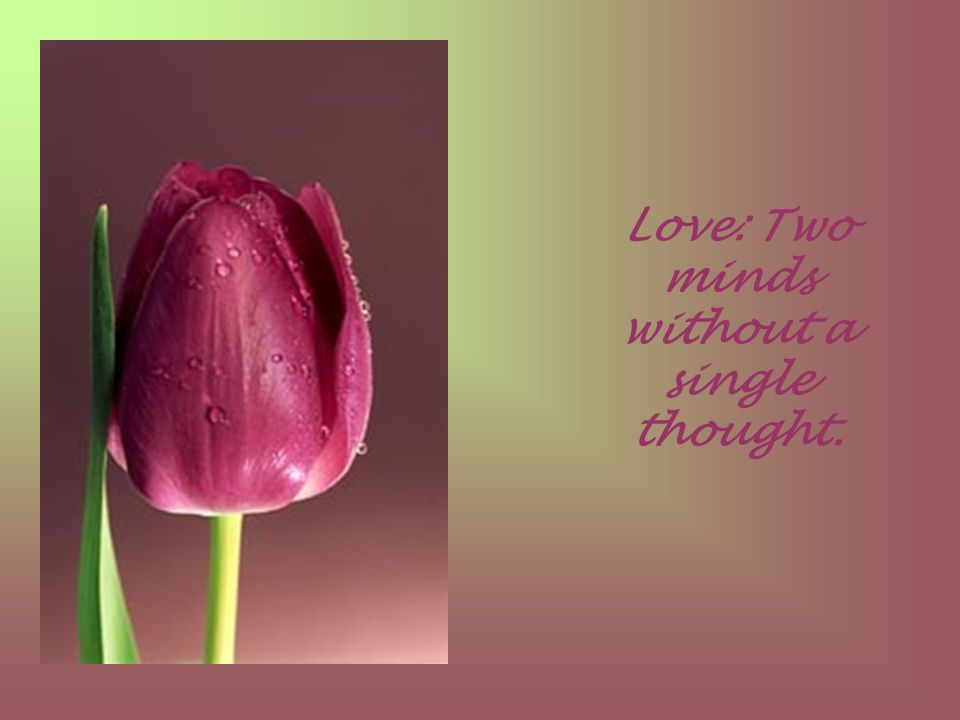 Love: Two minds without a single thought.