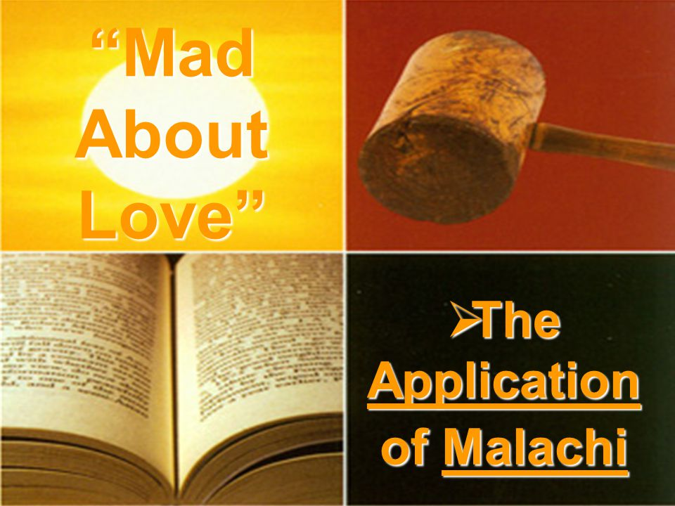 The Application of Malachi The Application of Malachi Mad About Love