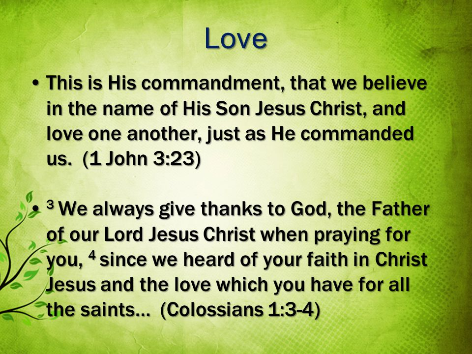Love This is His commandment, that we believe in the name of His Son Jesus Christ, and love one another, just as He commanded us.