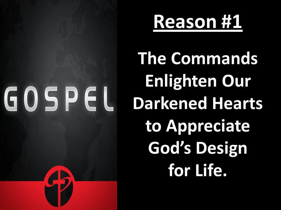 Reason #1 The Commands Enlighten Our Darkened Hearts to Appreciate Gods Design for Life.