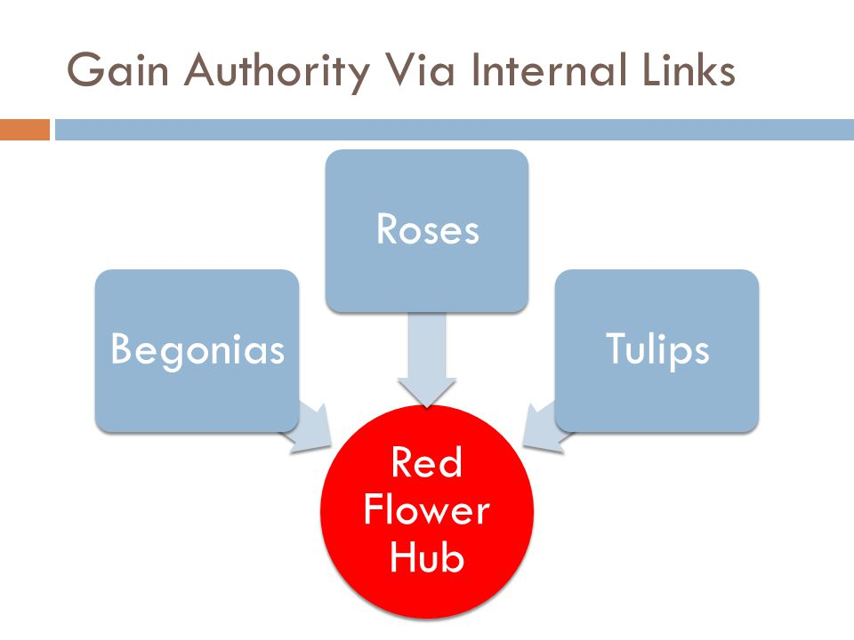 Gain Authority Via Internal Links Red Flower Hub BegoniasRosesTulips