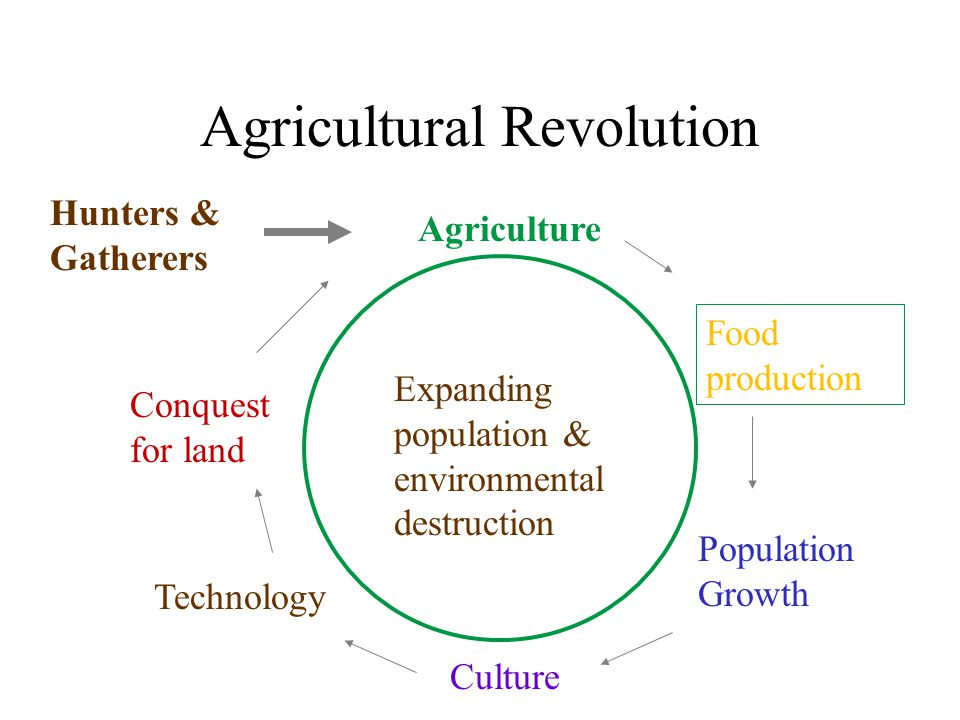 Agricultural Revolution Hunters & Gatherers Agriculture Population Growth Technology Conquest for land Food production Culture Expanding population & environmental destruction