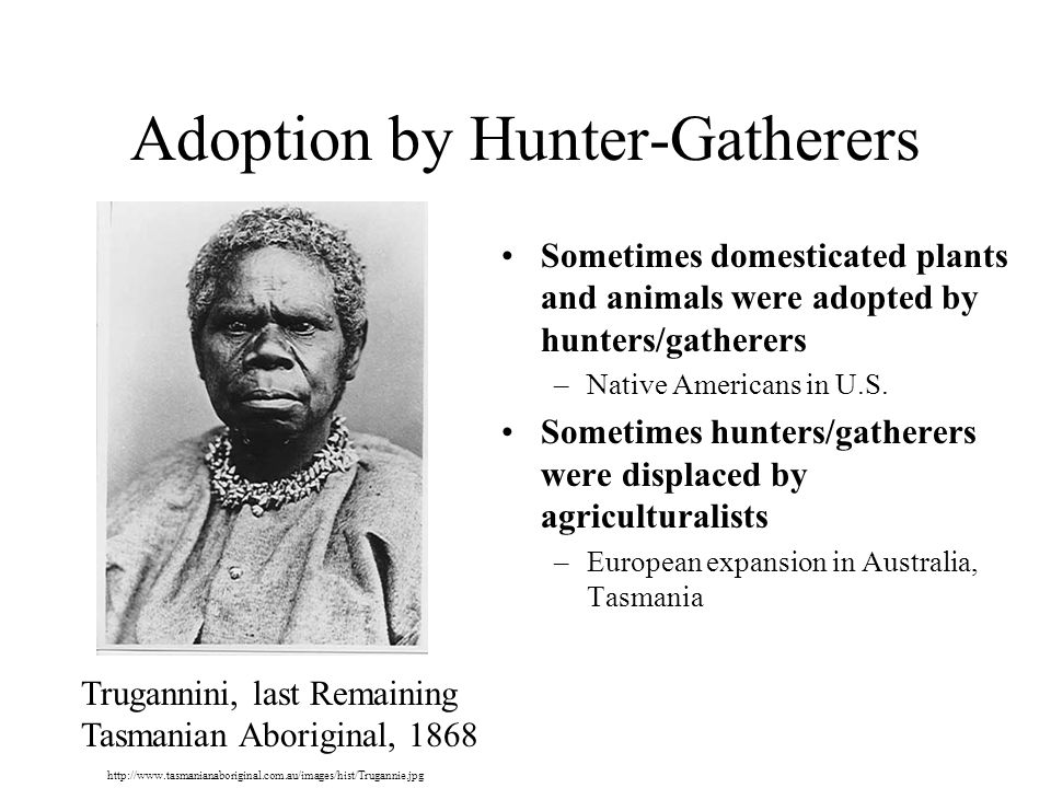 Adoption by Hunter-Gatherers Sometimes domesticated plants and animals were adopted by hunters/gatherers –Native Americans in U.S.
