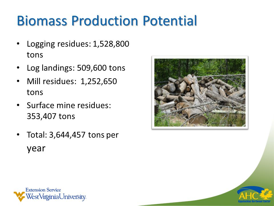 Biomass Production Potential Logging residues: 1,528,800 tons Log landings: 509,600 tons Mill residues: 1,252,650 tons Surface mine residues: 353,407 tons Total: 3,644,457 tons per year