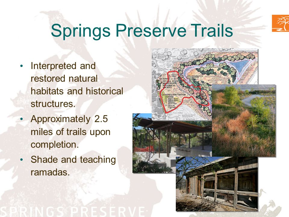 Springs Preserve Trails Interpreted and restored natural habitats and historical structures 2.5 miles of trails Shade and teaching ramadas Springs Preserve Trails Interpreted and restored natural habitats and historical structures.
