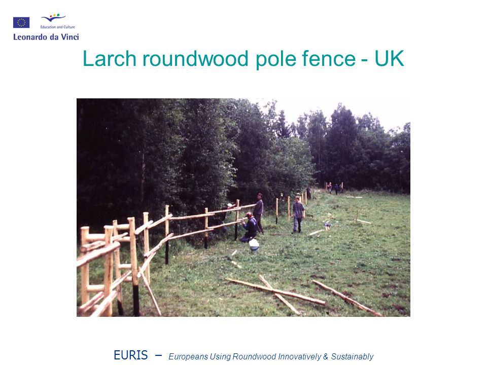 EURIS – Europeans Using Roundwood Innovatively & Sustainably Larch roundwood pole fence - UK