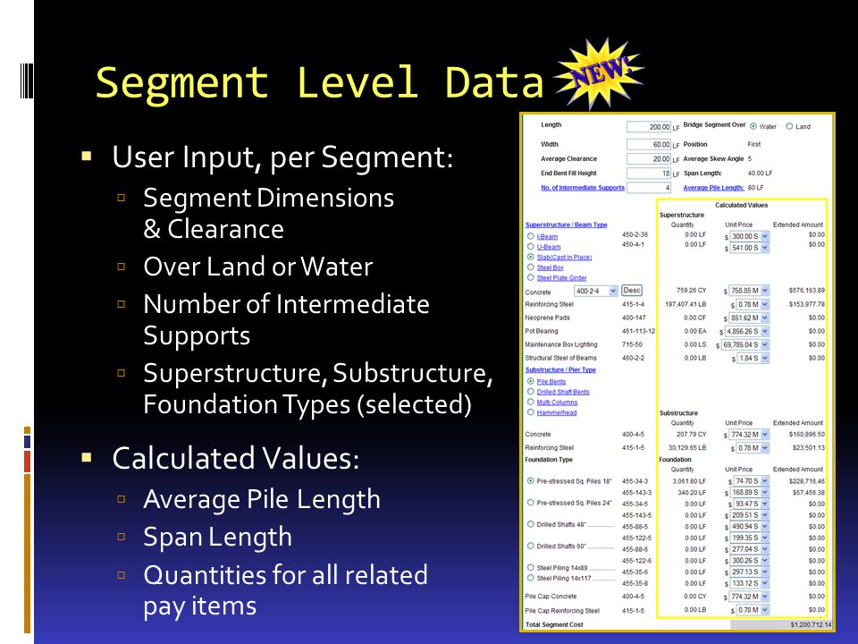 Segment Level Data User Input, per Segment: Segment Dimensions & Clearance Over Land or Water Number of Intermediate Supports Superstructure, Substructure, Foundation Types (selected) Calculated Values: Average Pile Length Span Length Quantities for all related pay items
