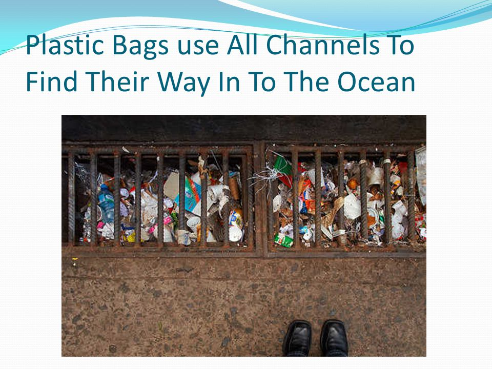Plastic Bags use All Channels To Find Their Way In To The Ocean