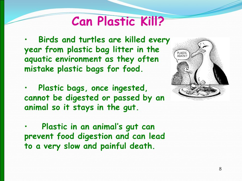 Can Plastic Kill.