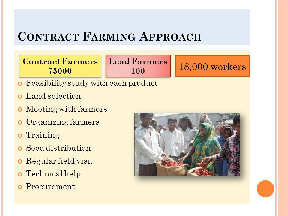 C ONTRACT F ARMING A PPROACH Feasibility study with each product Land selection Meeting with farmers Organizing farmers Training Seed distribution Regular field visit Technical help Procurement Contract Farmers 75000 Lead Farmers 100 Lead Farmers 100 18,000 workers