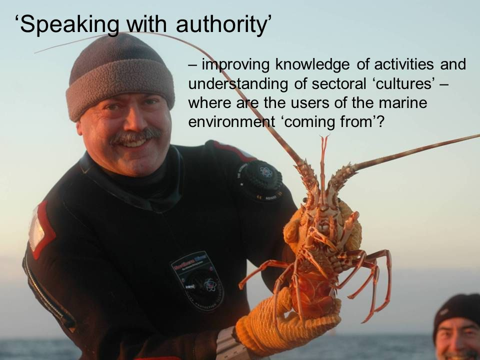 Speaking with authority – improving knowledge of activities and understanding of sectoral cultures – where are the users of the marine environment coming from