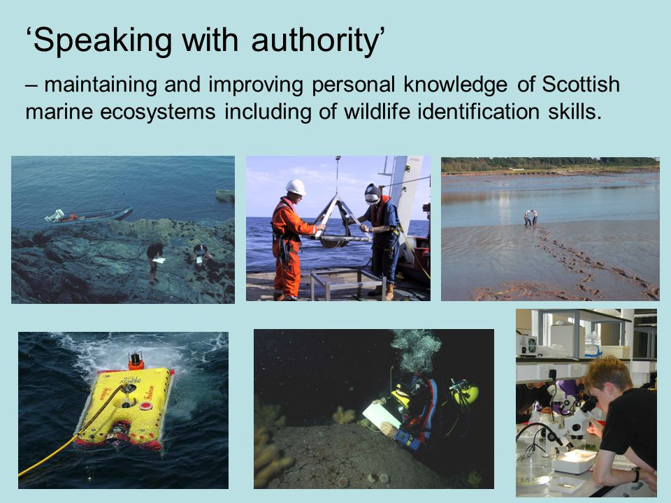 Speaking with authority – maintaining and improving personal knowledge of Scottish marine ecosystems including of wildlife identification skills.